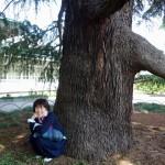 ゆずこ|エリイサ・ノヴィックさんのワークショップを日本で開催するにいたって